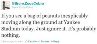 Cobra-twitter