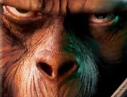 Rise_of_the_planet_of_the_apes_mad_face