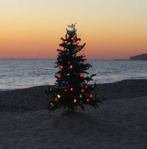 Christmas-tree-on-beach-1440x900