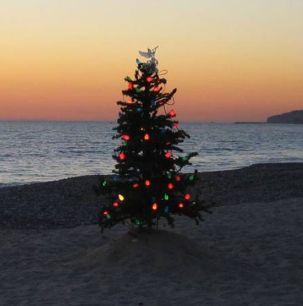 Christmas-tree-on-beach-1440x900