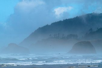 Foggy-morning-along-oregon-coast