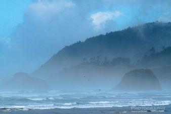 Foggy-morning-along-oregon-coast
