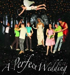 12_0314perfectweddingposterfinal_web