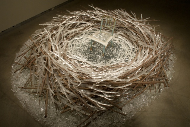 birds nest a