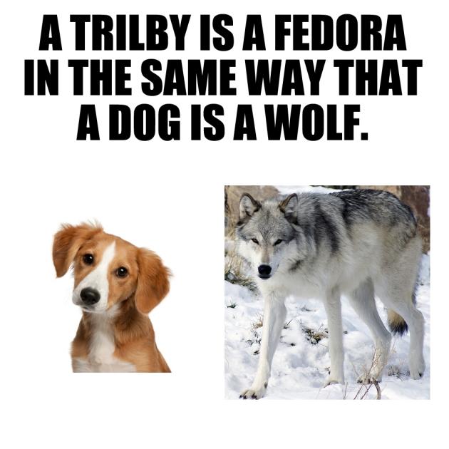 fedora 05