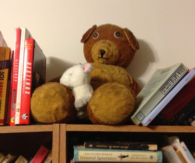 my teddy 2013